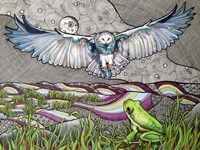 Owl And Frog Fine Art Print
