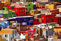Color town Fine Art Print