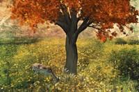 Nature Color Fine Art Print