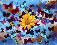 Daisy And Butterflies Fine Art Print