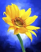 Sun Flower Fine Art Print