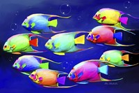 Colorful Fishes 2 Fine Art Print