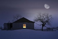 Winter Night Fine Art Print