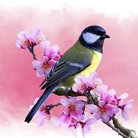 Spring Bird 3A Fine Art Print