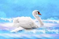 Swan 8A Fine Art Print