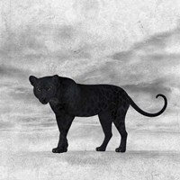 The Jaguar 2 Fine Art Print