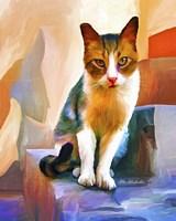 Cat 1A Fine Art Print