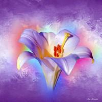 Flower On Colors 2 Fine Art Print