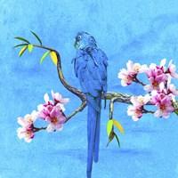 Spring Bird And Flower Fine Art Print