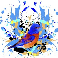 Bird Collection 13 Fine Art Print