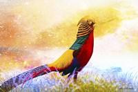 Bird Collection 20 Fine Art Print
