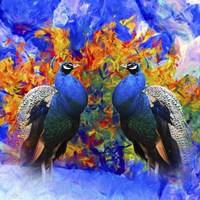 Bird Collection 26 Fine Art Print