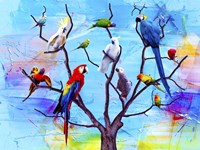 Birds Land !H Fine Art Print
