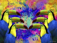 Colorful Birds A1A Fine Art Print