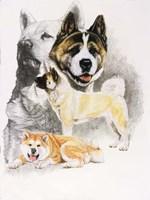 Akita Fine Art Print