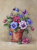 Pansy Pot Fine Art Print
