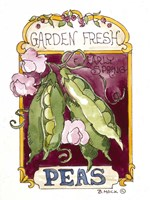 Garden Fresh Peas-Seed Packet Fine Art Print