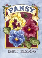 Large Pansy-Seed Packet Fine Art Print