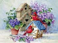 A Cardinal's Home Fine Art Print
