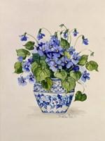 Blue and White Porcelain Violets Fine Art Print