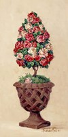 Rose Topiary II Fine Art Print