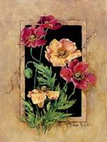 Framed Poppies Framed Print