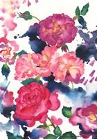 A Rose Is Just A Rose Fine Art Print