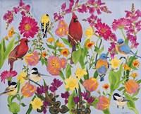 Songbird Collection Fine Art Print