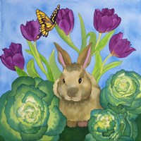 Bunny with Cabbage Fine Art Print