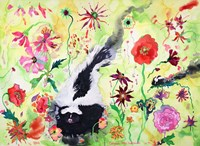Skunk Fine Art Print