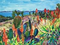 Santa Barbara Grace Fine Art Print
