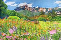Santa Barbara Botanic Garden Fine Art Print