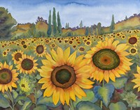 Sunflower Fields Fine Art Print