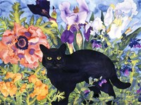 Black Cat Magic Fine Art Print
