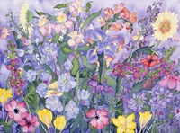 Soft Spring Fine Art Print