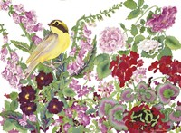 Warbler With Frog Fine Art Print