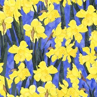 Fertile Rising - Daffodils Fine Art Print