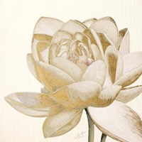 Vintage Lotus Cream II Fine Art Print