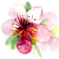 Floral Beauty I Fine Art Print