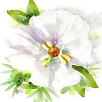 Floral Beauty III Fine Art Print