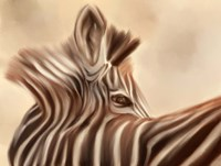 Zebra Looking Over Shoulder Fine Art Print