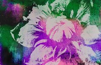 Color Pop Flower Fine Art Print