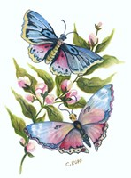 Butterfly in Pink and Blue Fine Art Print