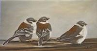 Chickadees on the Deck Fine Art Print