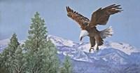 Soaring over Snowy Peaks Fine Art Print
