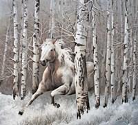 Subtle Tones of Nature Fine Art Print