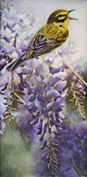 Yellow Bird in Wisteria Fine Art Print