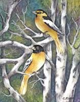 Yellow Birds Fine Art Print