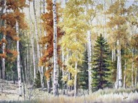Angel Fire Aspens Fine Art Print