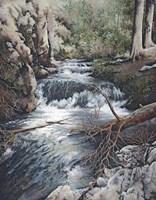 Clear Creek Fine Art Print